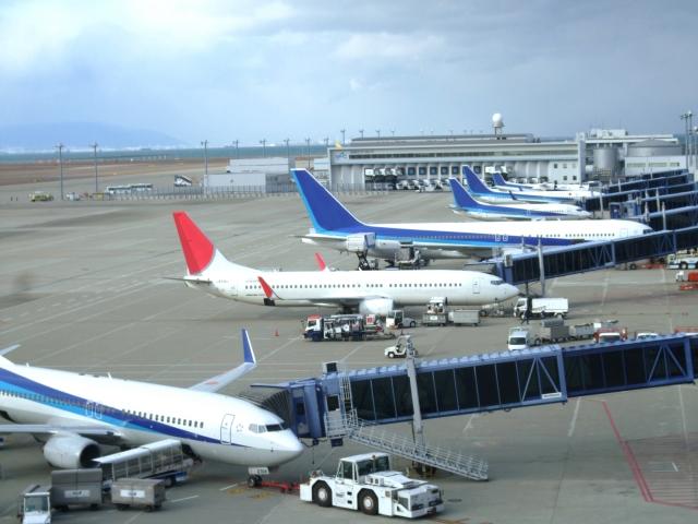 空港のJALとANA機