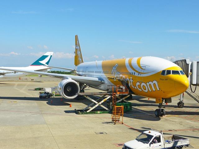 Scoot/スクートの航空機