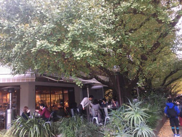 2017年11月11日神宮外苑Royal garden cafe