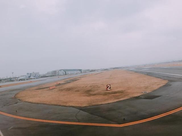 ANA985便伊丹空港到着