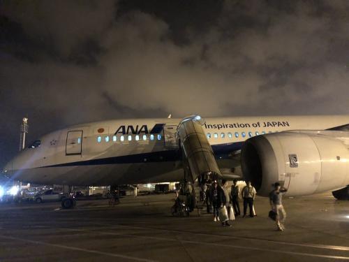 ANA971便搭乗記