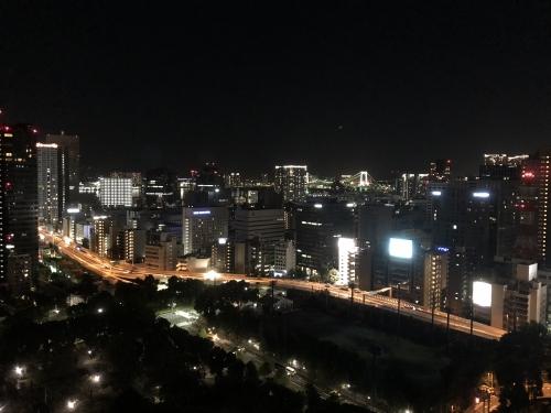 ザプリンスパークタワー東京の夜景
