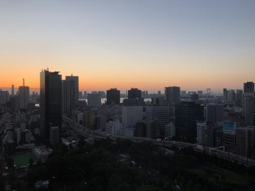 ザプリンスパークタワー東京の景色
