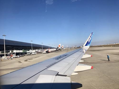 ANA A321
