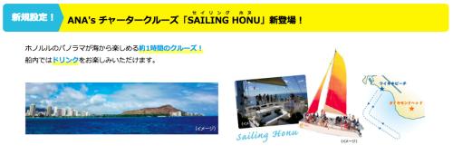 ANA sailing honu