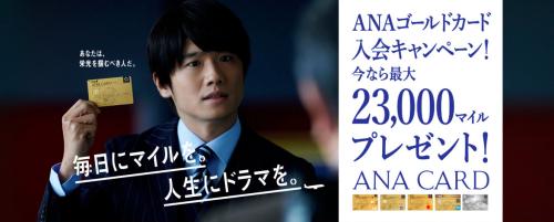 ana-visa gold