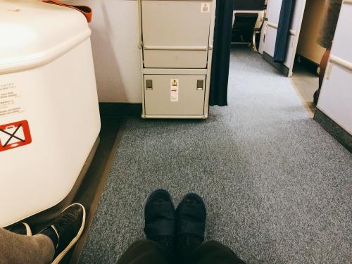 ANA国際線座席