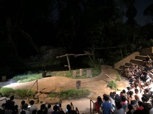 ナイトサファリシンガポールのアニマルショー