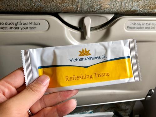 ベトナム航空VN181便